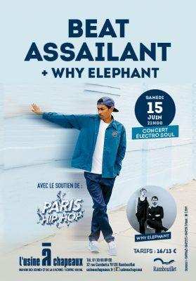 BEAT ASSAILANT- OFF PARIS HIP HOP